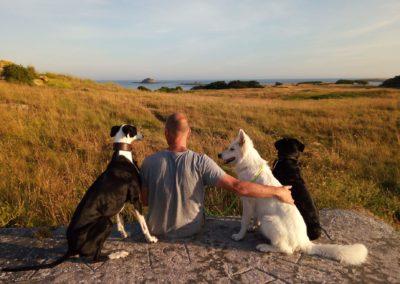 w-dog-odyssee-dressage-canin4
