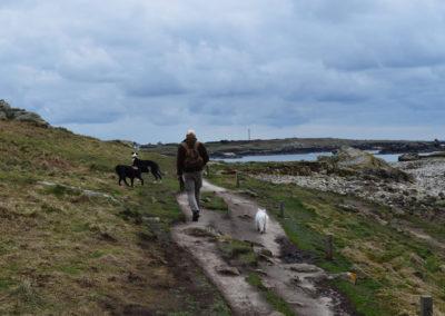 l'homme, le chien et la nature