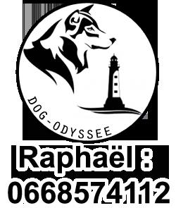 Dog Odyssée